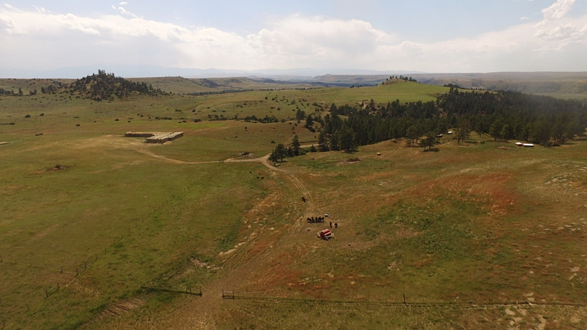 Pine Coulee Ranch in Absarokee, Montana