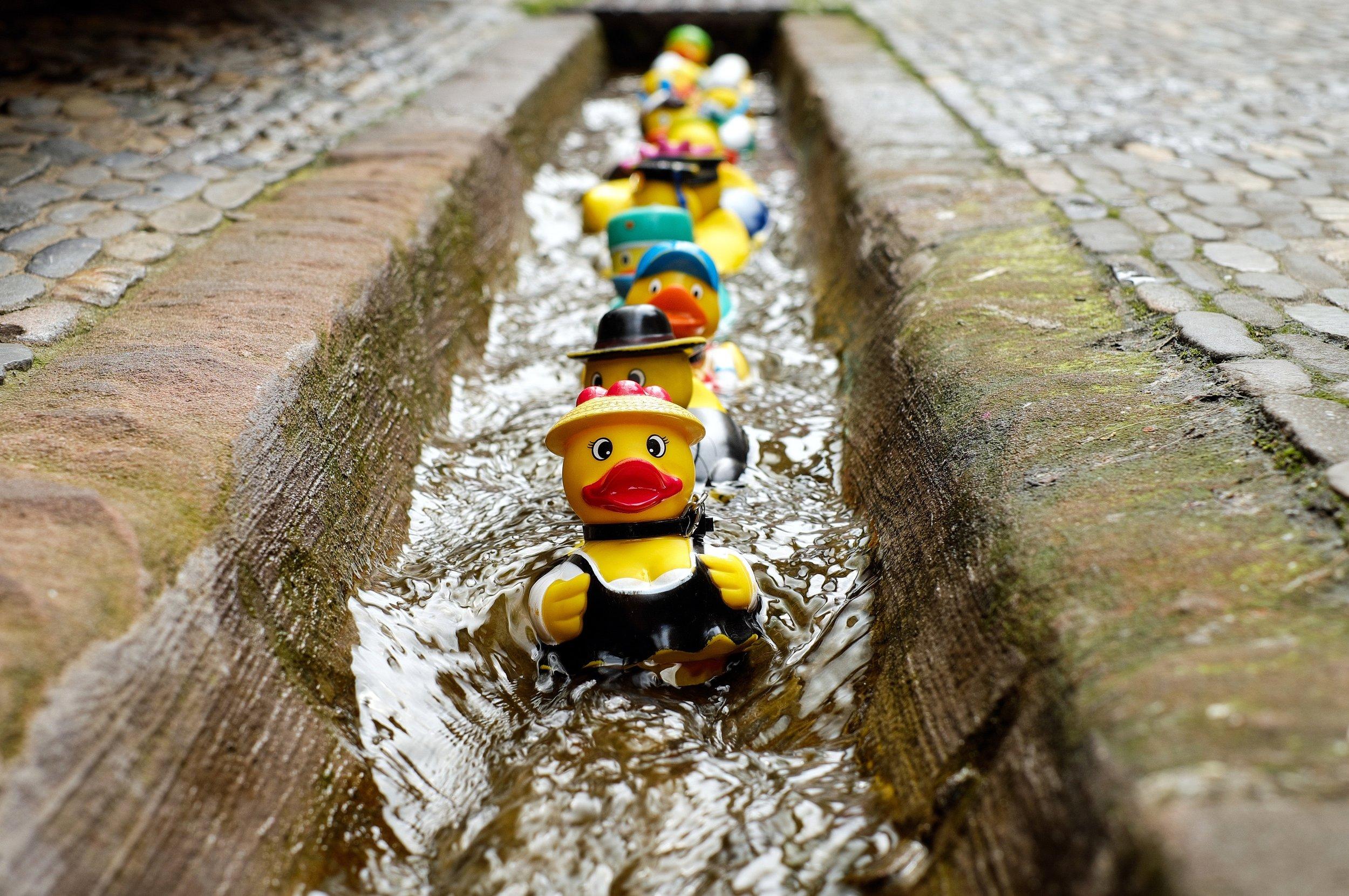 bath-ducks-blur-colorful-106144.jpg