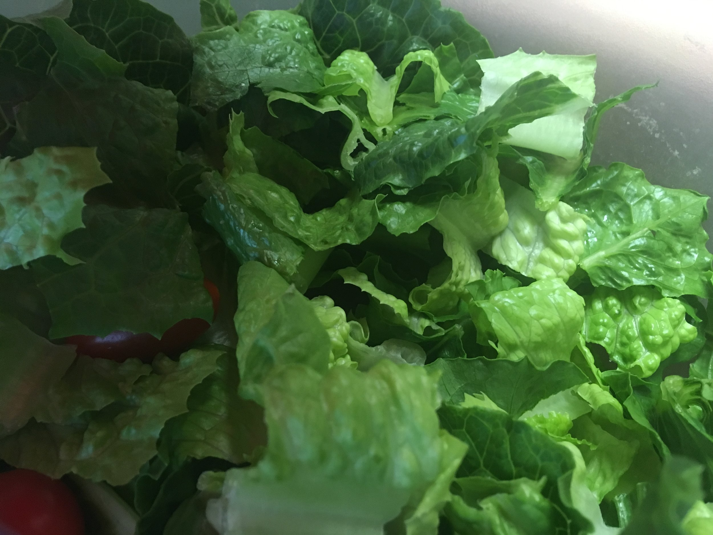 Step 1 - 2 Cups of romaine lettuce