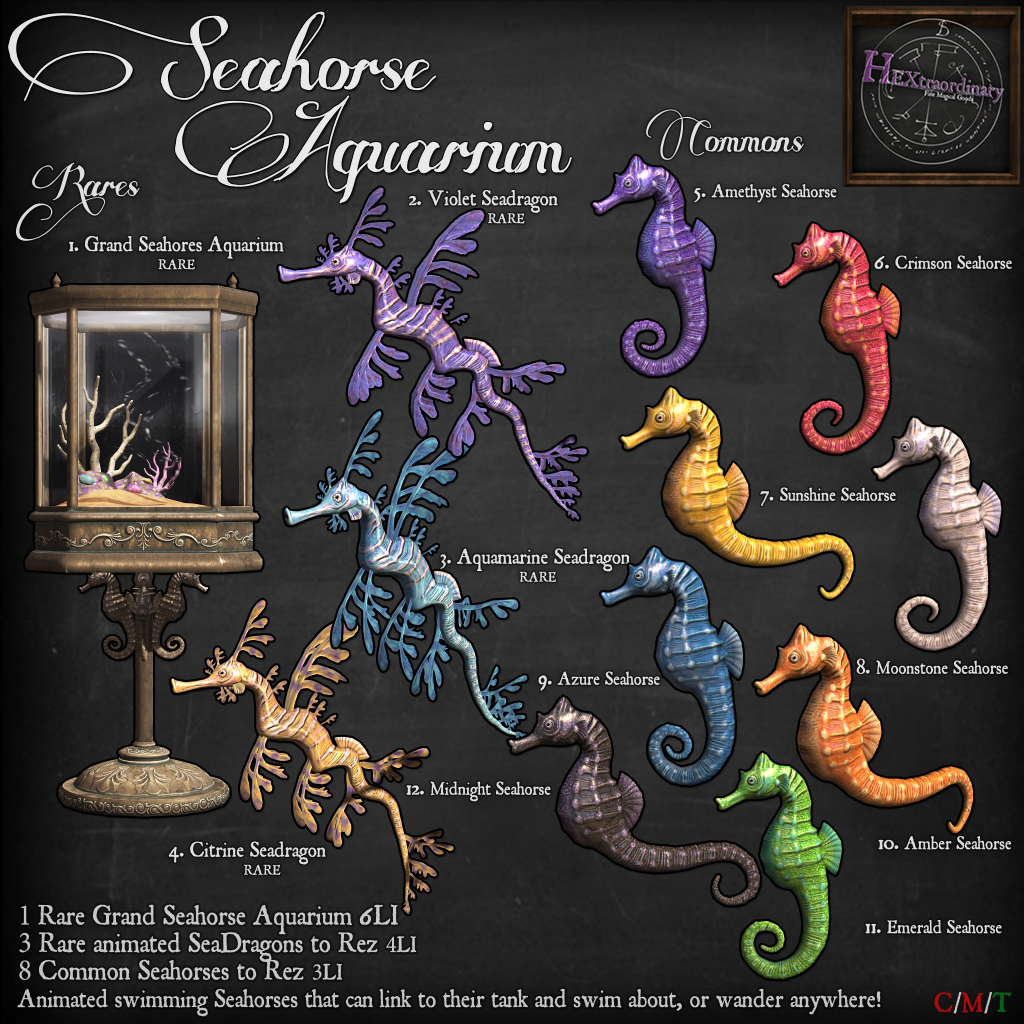 _HEXtraordinary_ Seahorse Aquarium Gacha Key.png