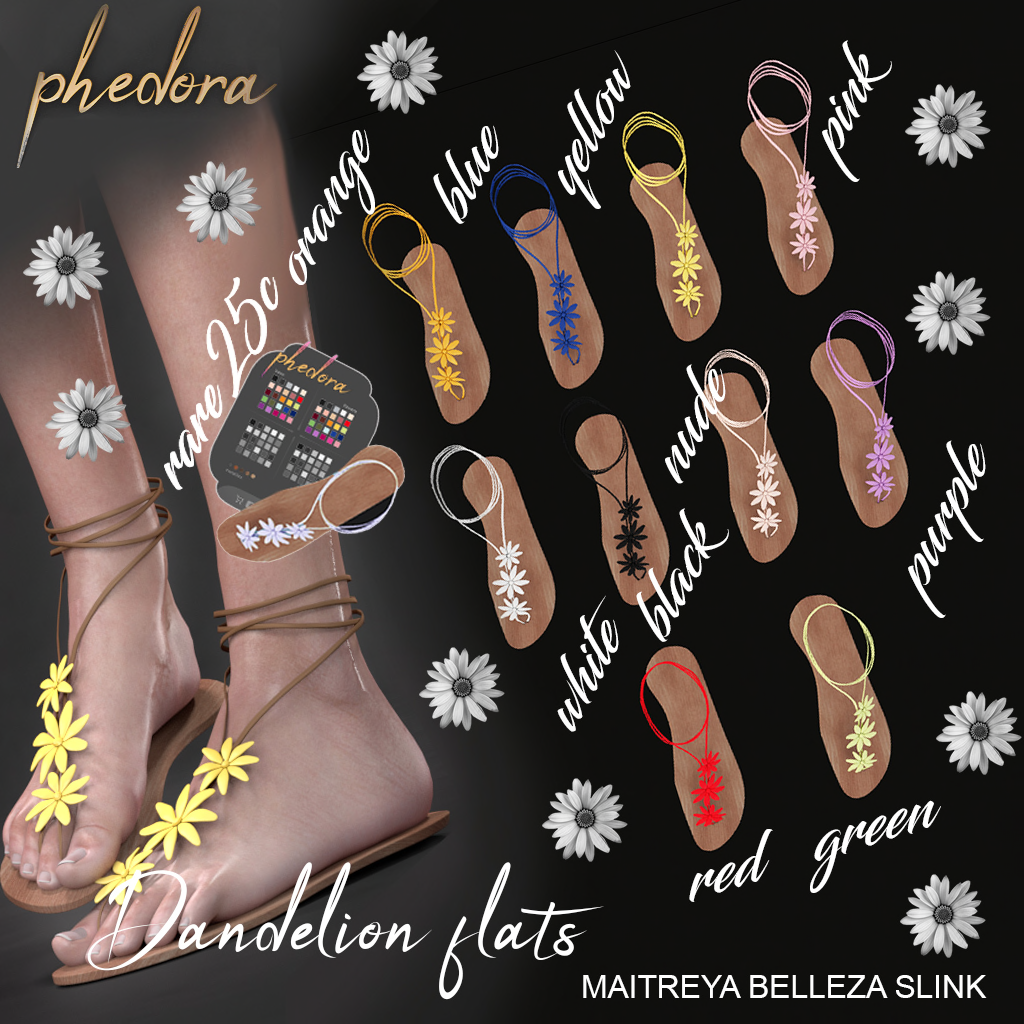 dandelion phedora epiphany.png