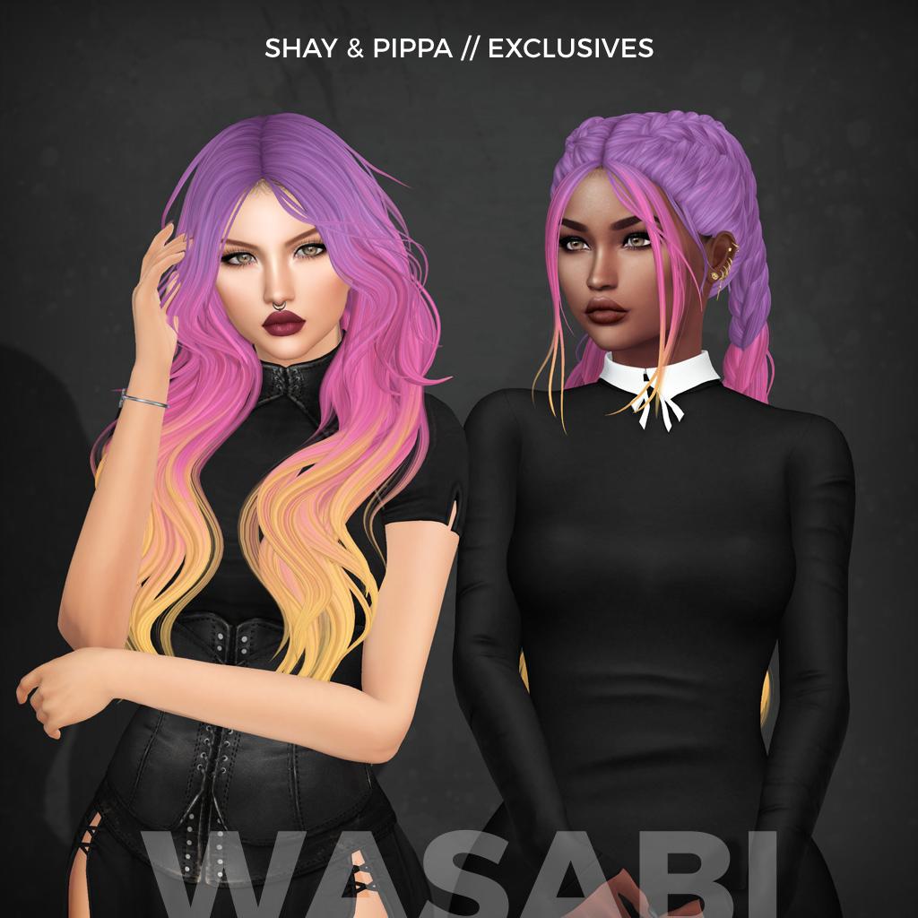 Wasabi __ Shay & Pippa exclusive.png