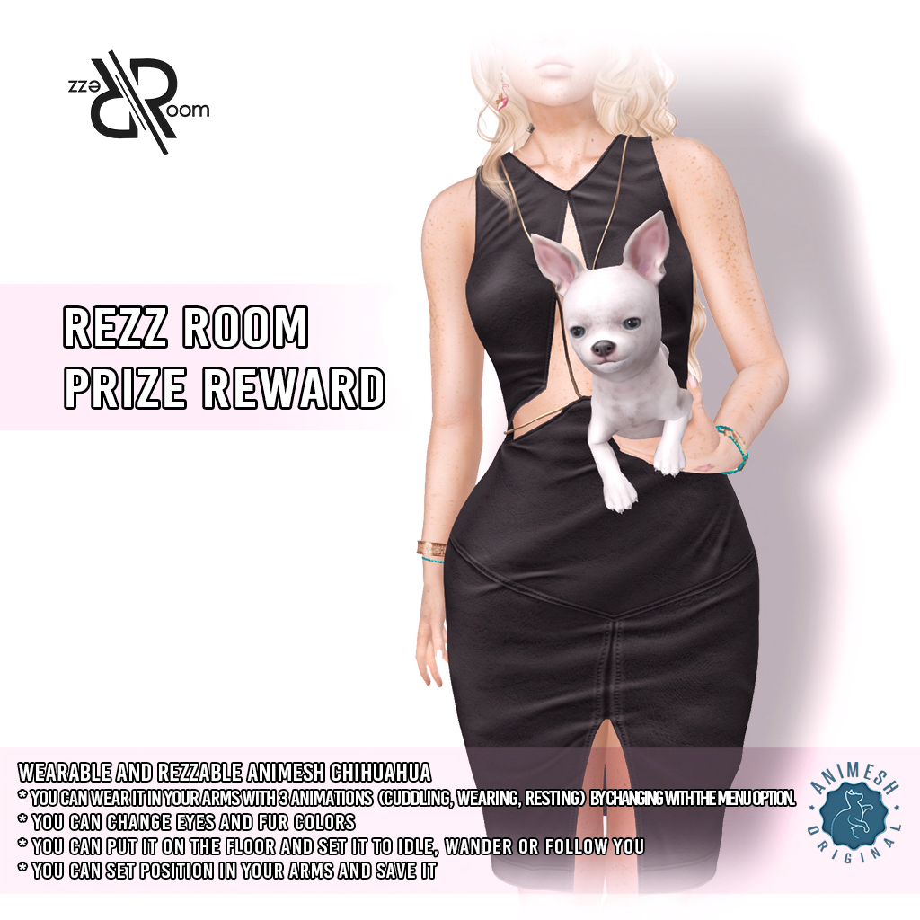 [Rezz Room] Vendor Chihuahua Holdable Animesh (Companion) VIP.png