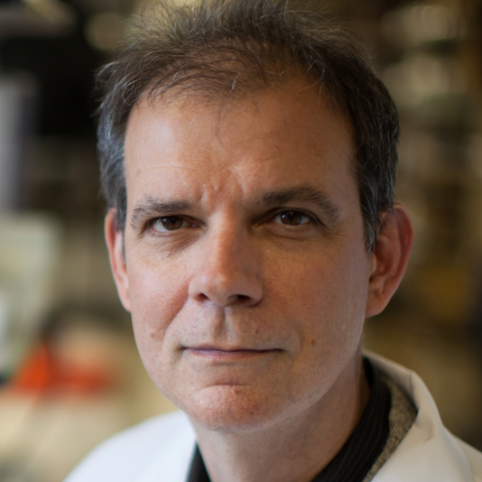 Arturo Casadevall   Bloomberg Distinguished Professor