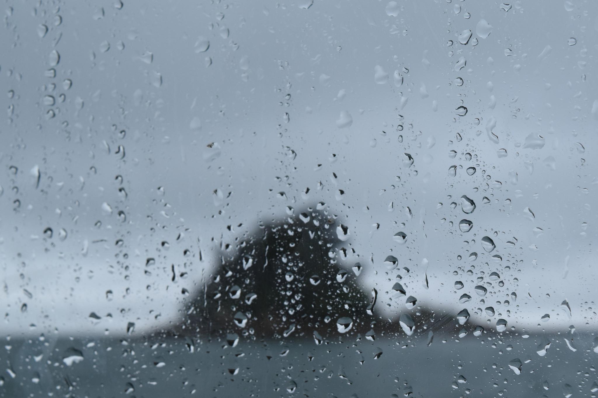 Rainy Island.jpg