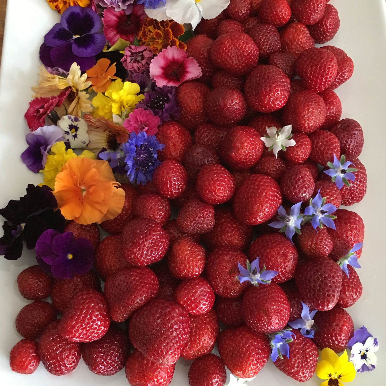 platter-vf_berries.jpg