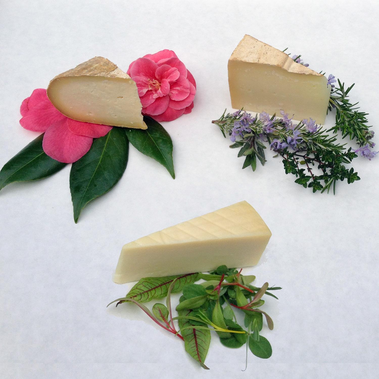 platters-cheese-mar.jpg