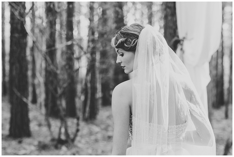 lynchburg_va_wedding_photographer_sierra_vista-40.jpg