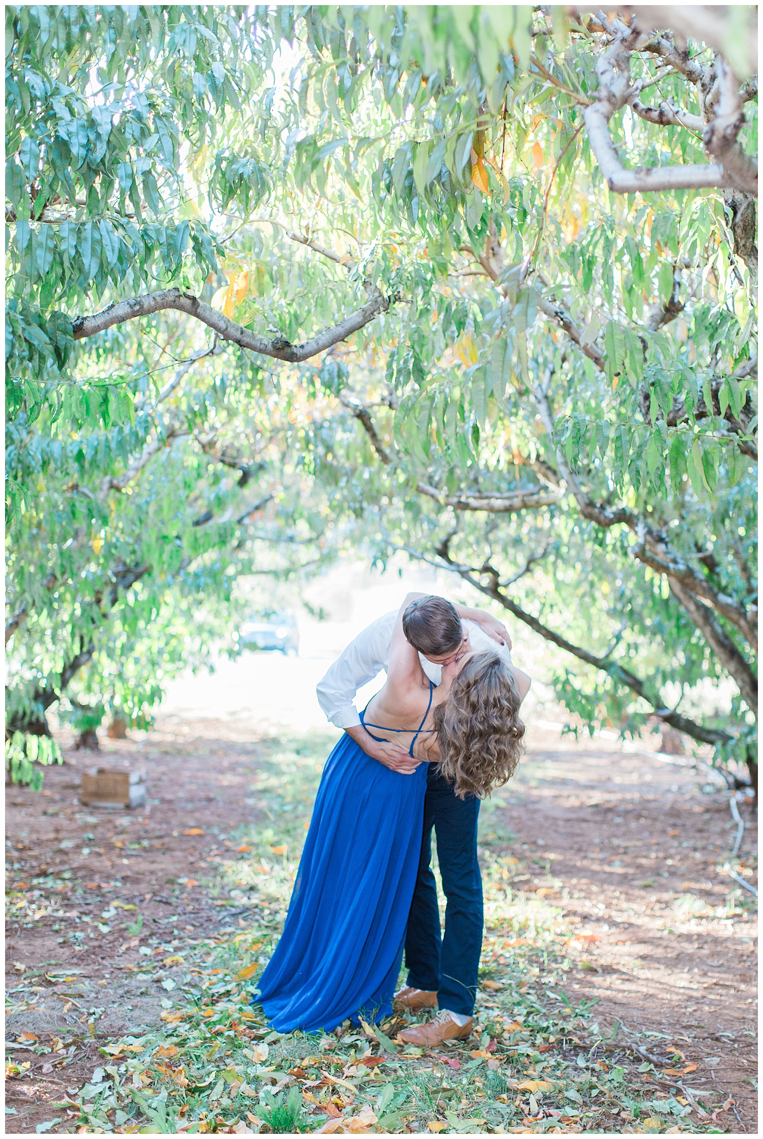 charlottesville_wedding_photographer_chiles_peach_orchard7.jpg
