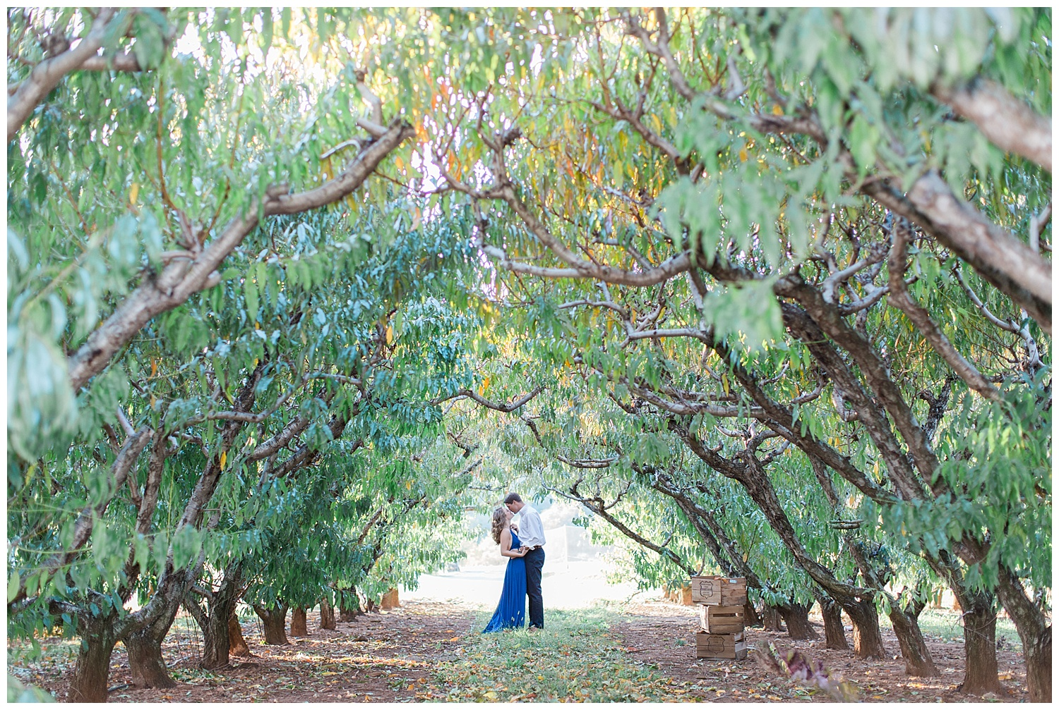 charlottesville_wedding_photographer_chiles_peach_orchard23.jpg
