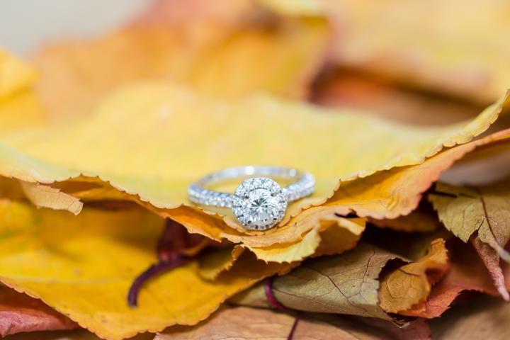 lynchburg_va_wedding_engagement_photographer-23.jpg