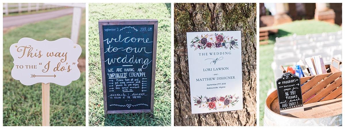 charlottesville_va_wedding_photographer_lori_matt41.jpg