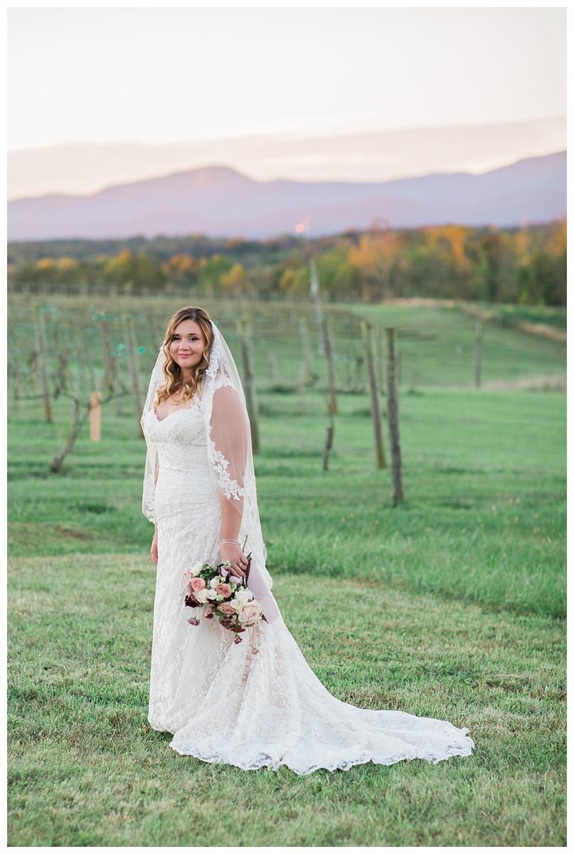 lynchburg_virginia_wedding_photographer_melissa_batman_photography_leogrande_winery74.jpg