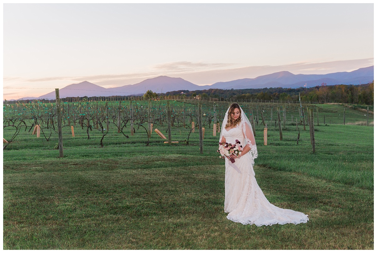 lynchburg_virginia_wedding_photographer_melissa_batman_photography_leogrande_winery88.jpg