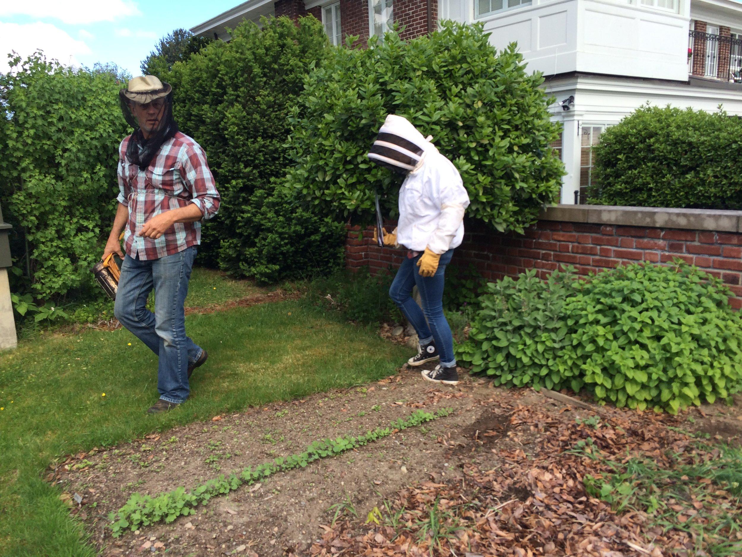 Working with Corky Luster of Ballard Bee Company