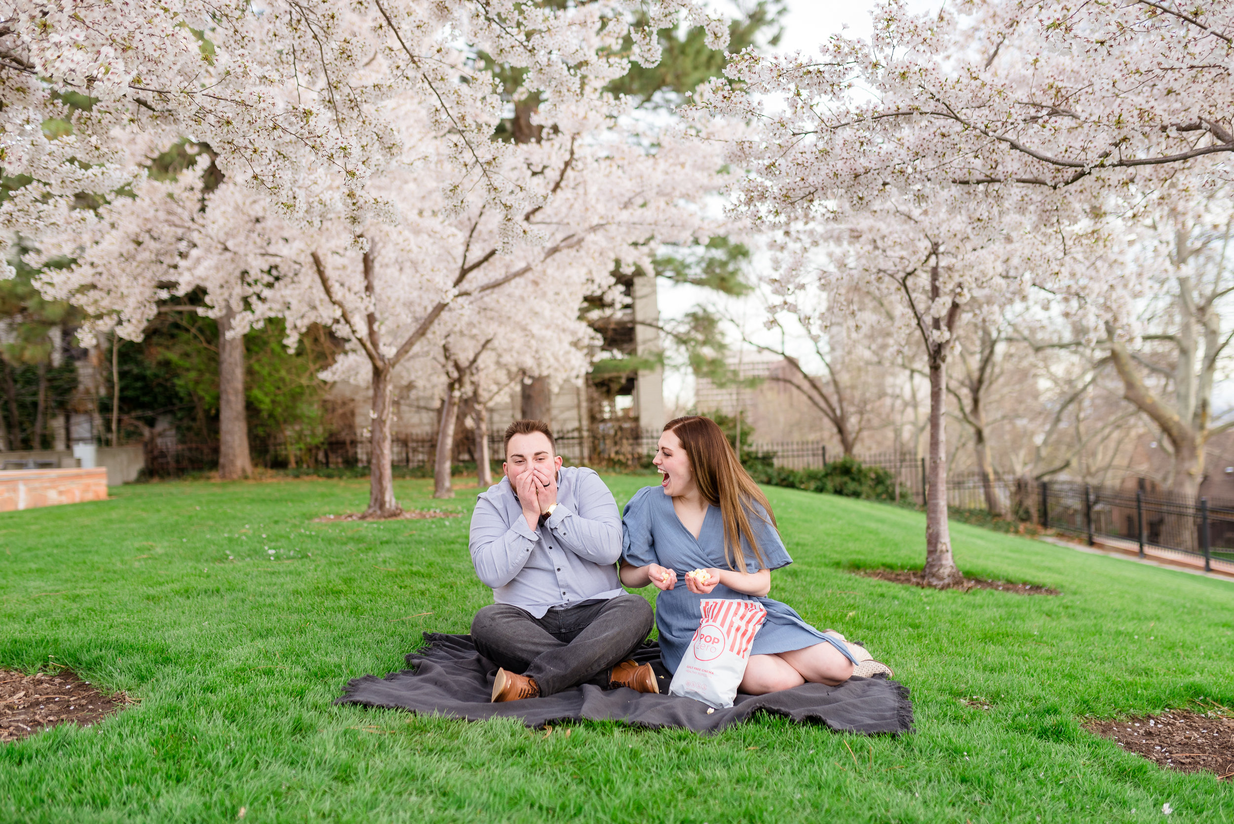 Engagements in the Utah State Capitol cherry blossoms.