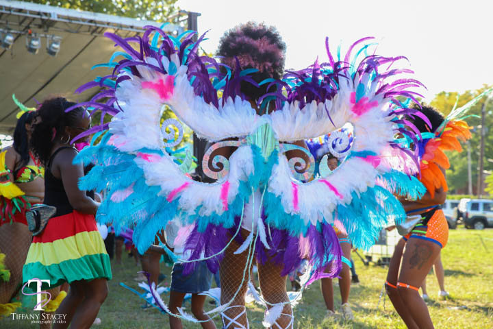 caribbeanfestival_columbusohio_eventphotography-1.jpg