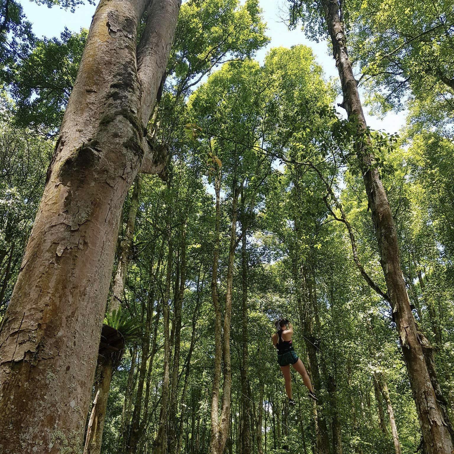 Bali Treetop Adventure2.JPG