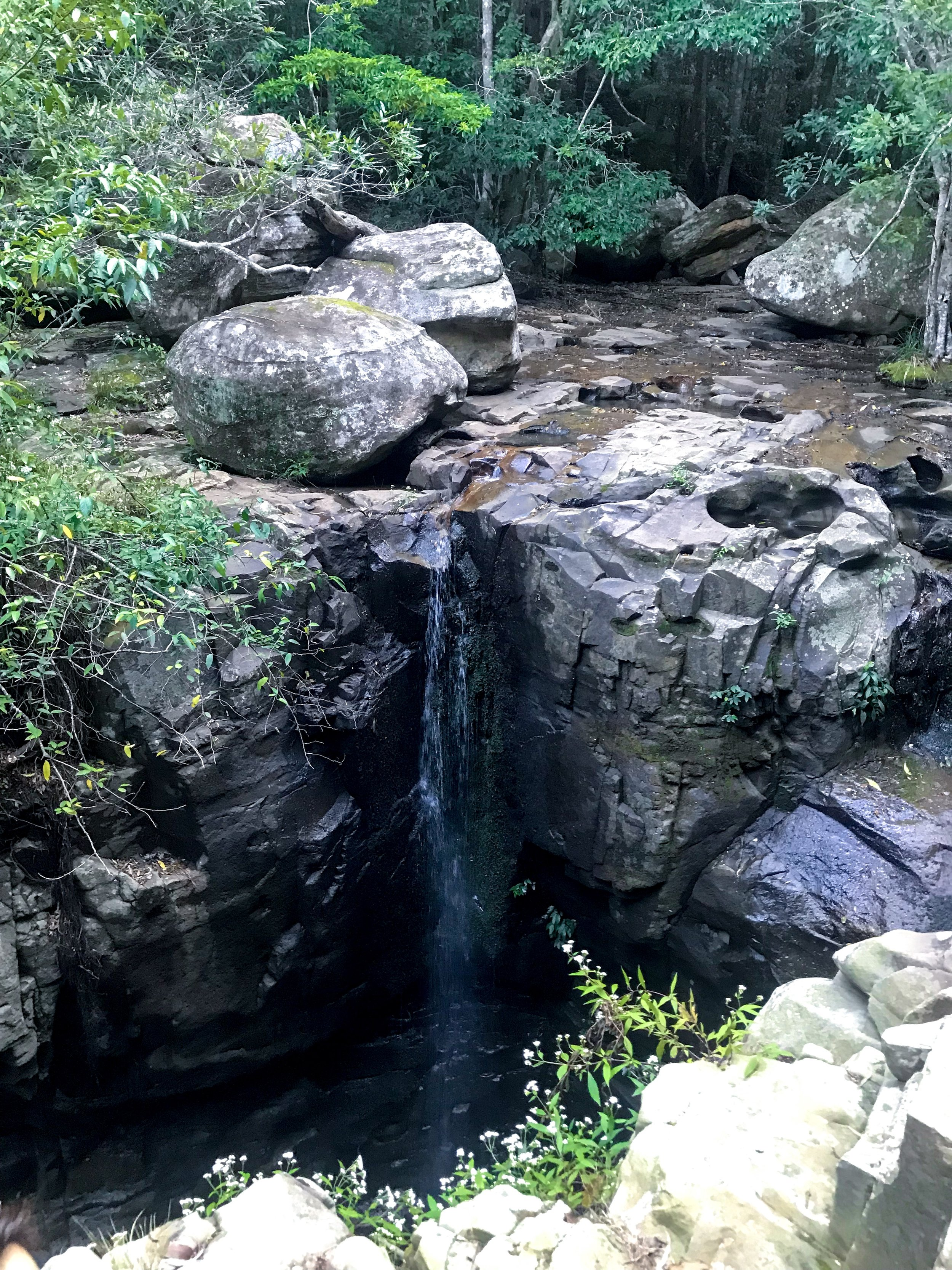 Things To Do In Shellharbour, Macquarie Pass National Park.JPG