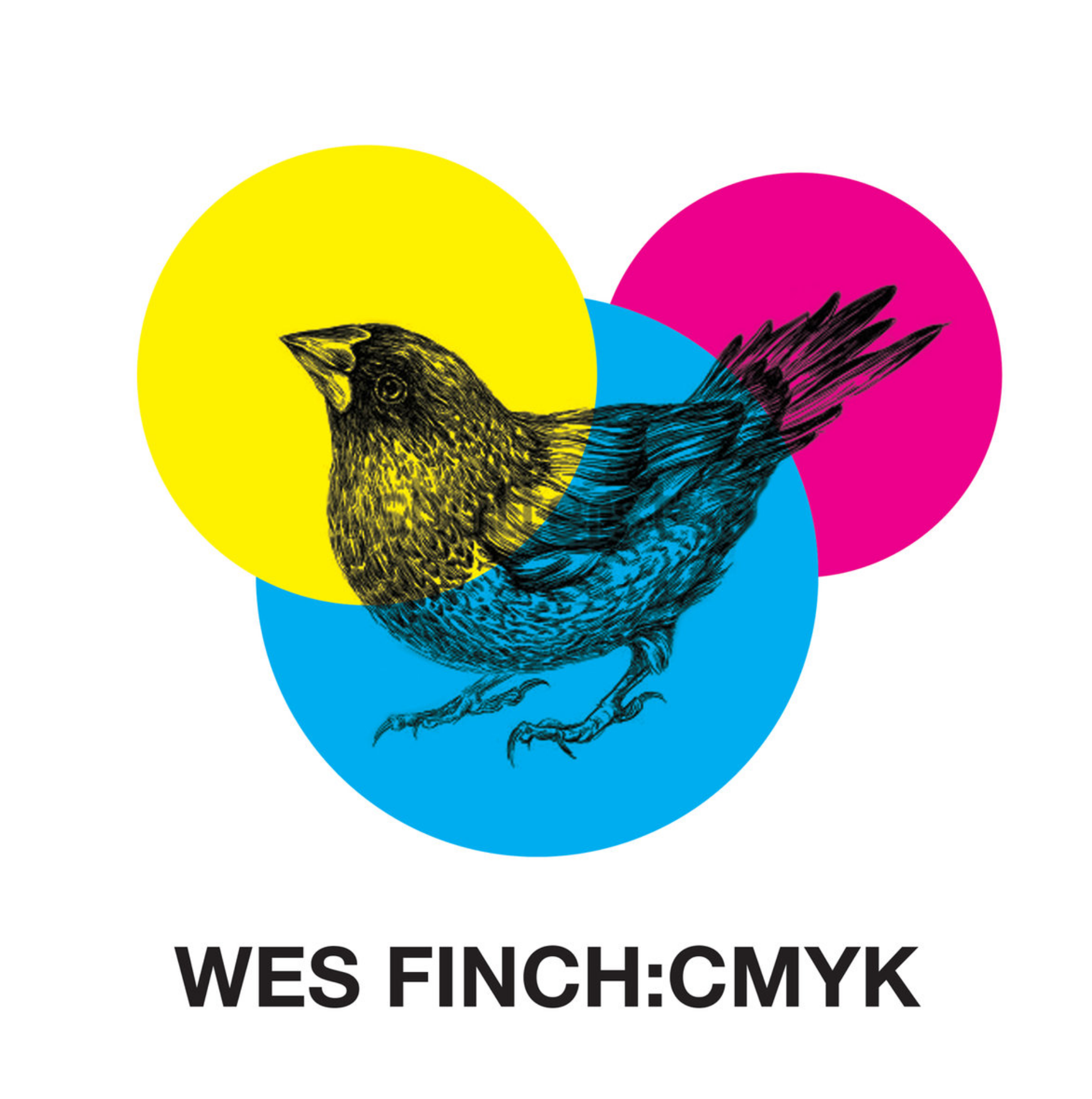 Wes Finch