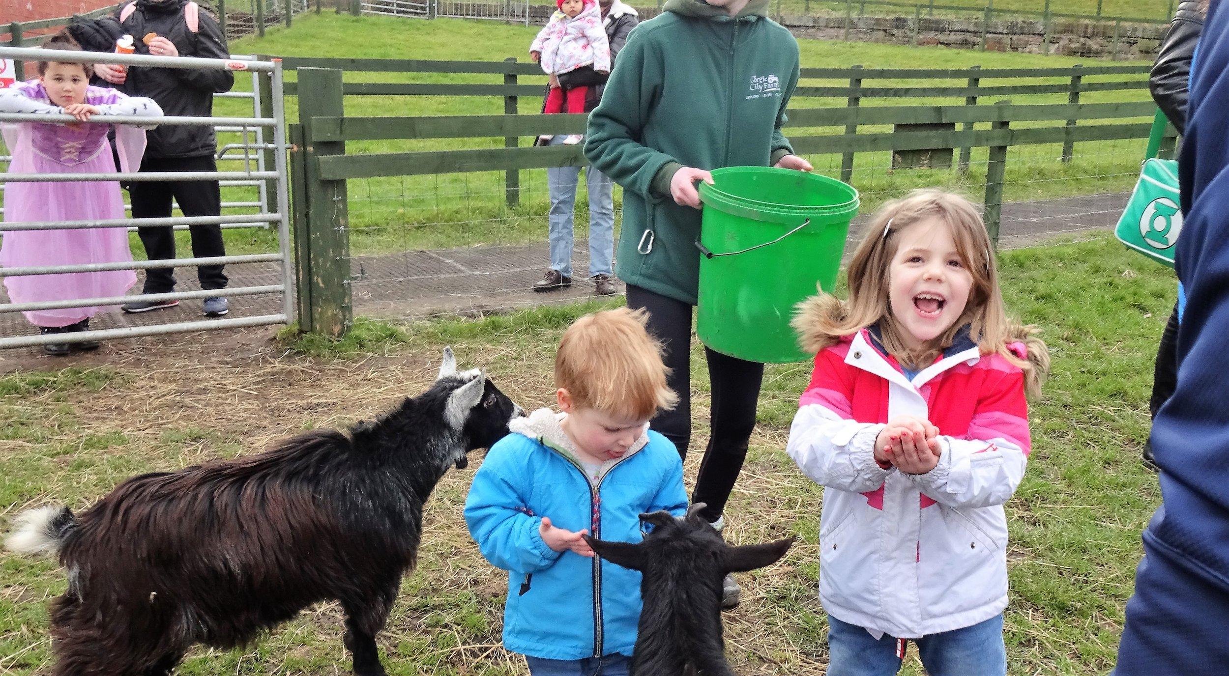girl and goats.jpg