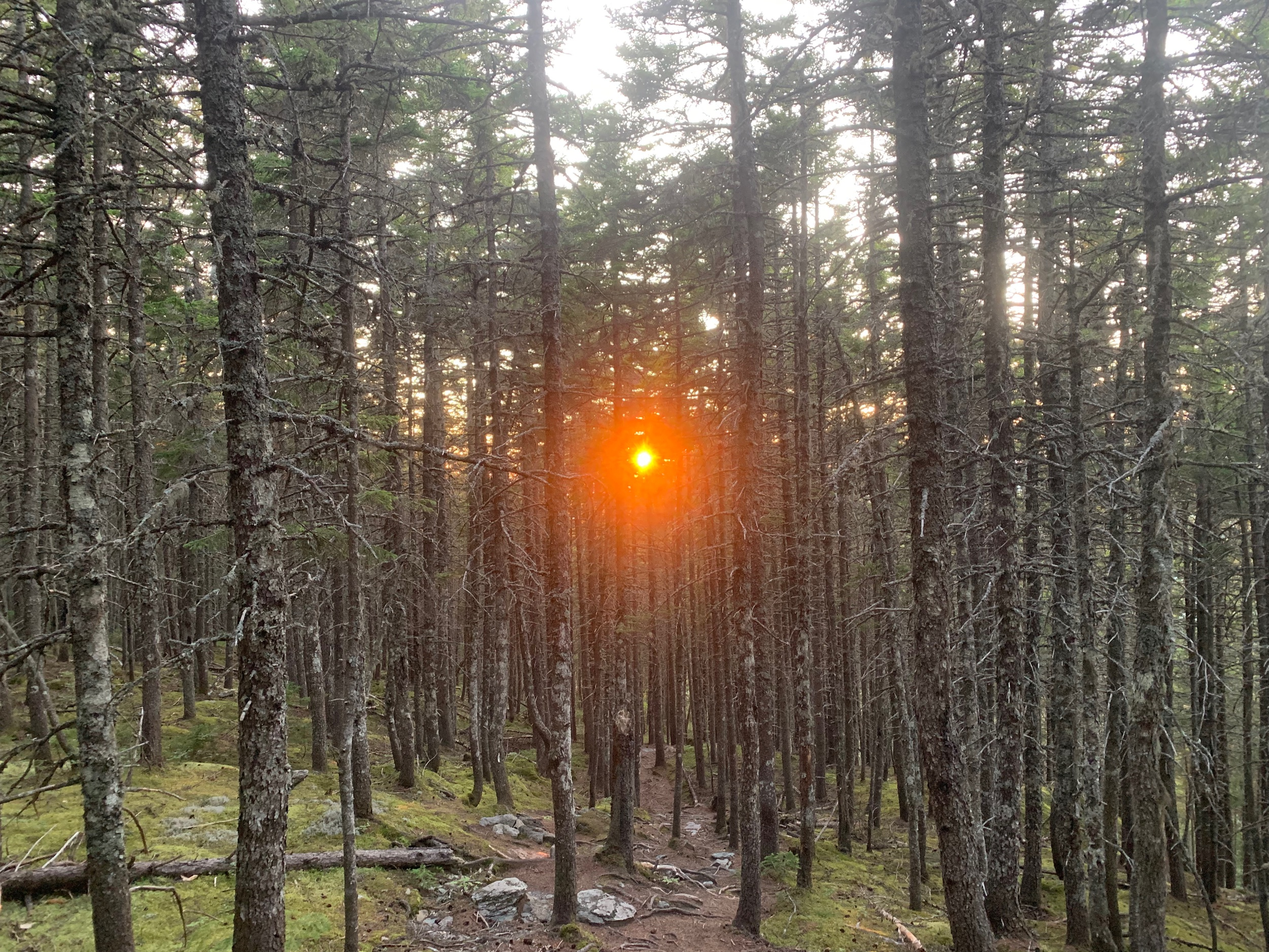 Sunset on the 100 mile wilderness