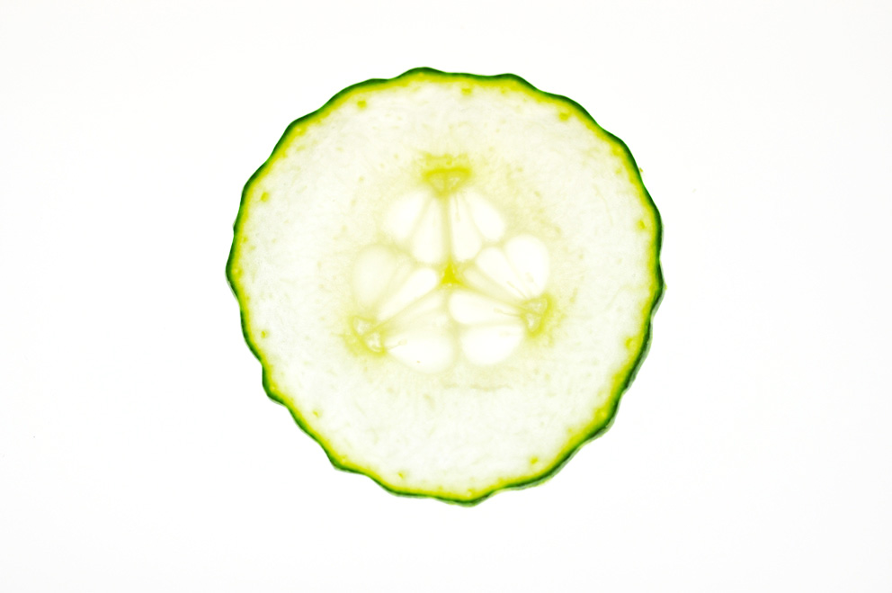 cucumber-web.jpg