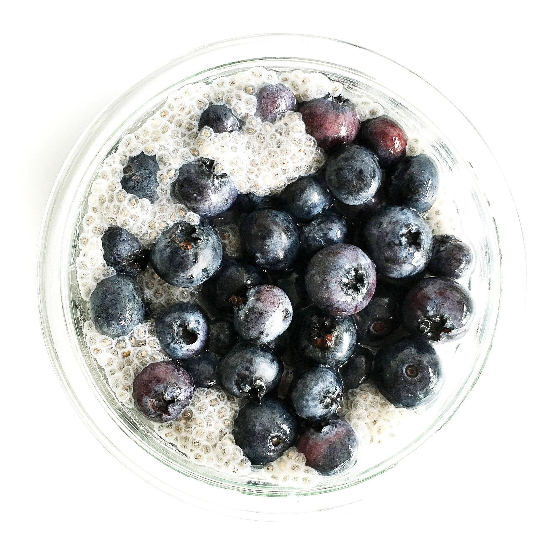 blueberrychia-light.jpg
