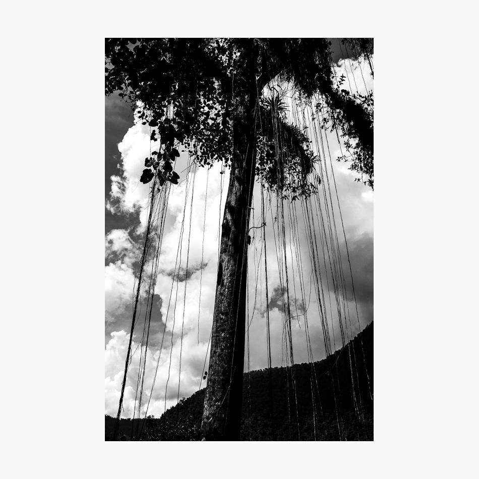 ©-2018-Harry-W-Edmonds-Photographer-Photographers-Note-The-Lost-City-PN26.jpg