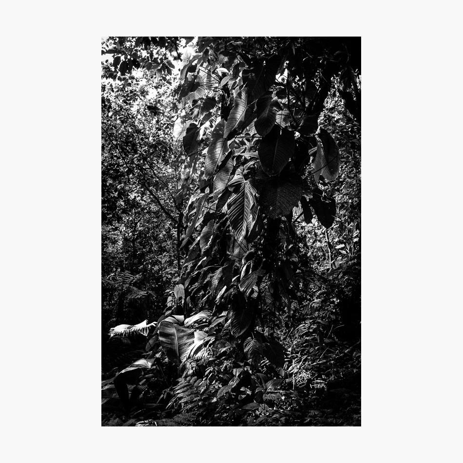 ©-2018-Harry-W-Edmonds-Photographer-Photographers-Note-The-Lost-City-PN11.jpg