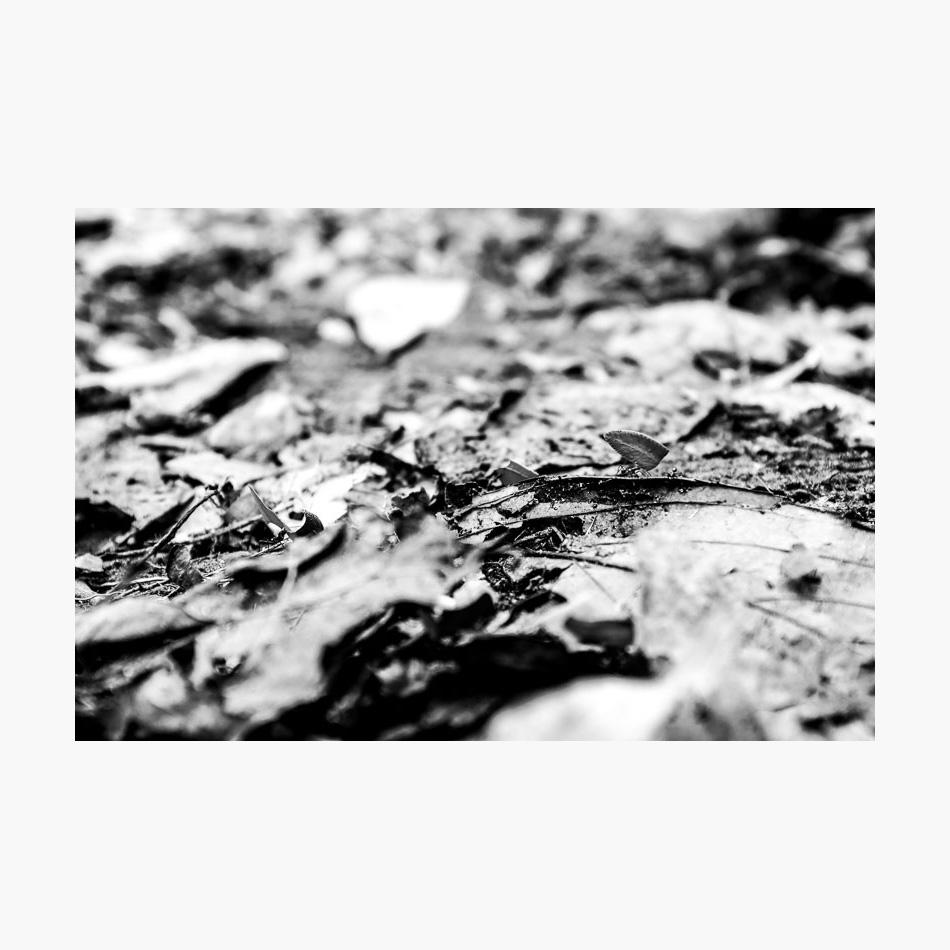 ©-2018-Harry-W-Edmonds-Photographer-Photographers-Note-The-Lost-City-PN24.jpg
