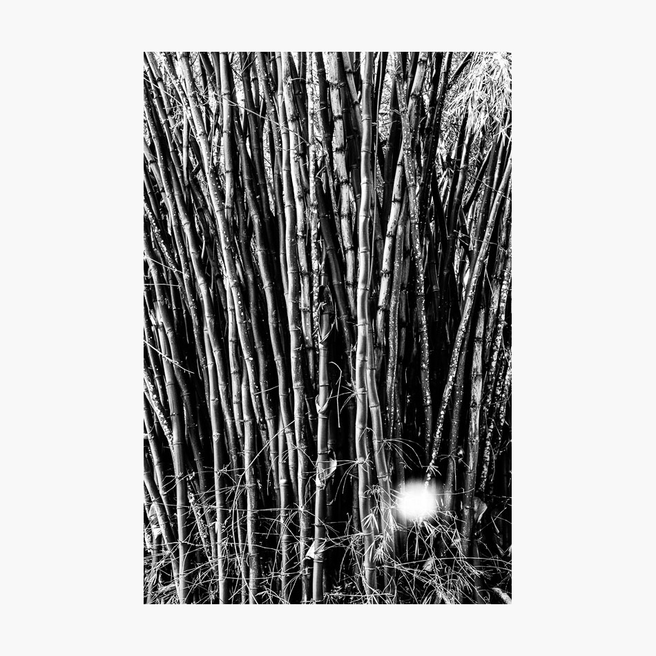©-2018-Harry-W-Edmonds-Photographer-Photographers-Note-The-Lost-City-PN30.jpg