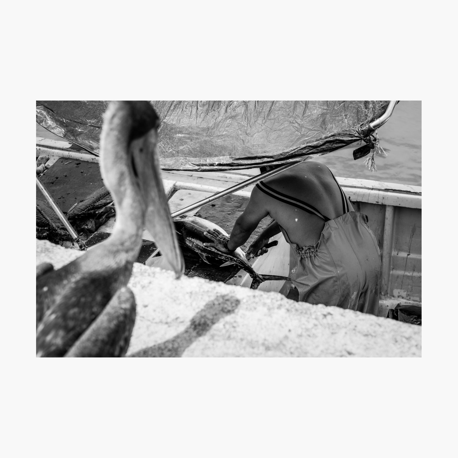 ©-2018-Harry-W-Edmonds-London-Photographers-Note-11-The-Fishermen-PN02.jpg