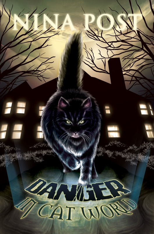 danger-in-cat-world-cover-front-800.jpg