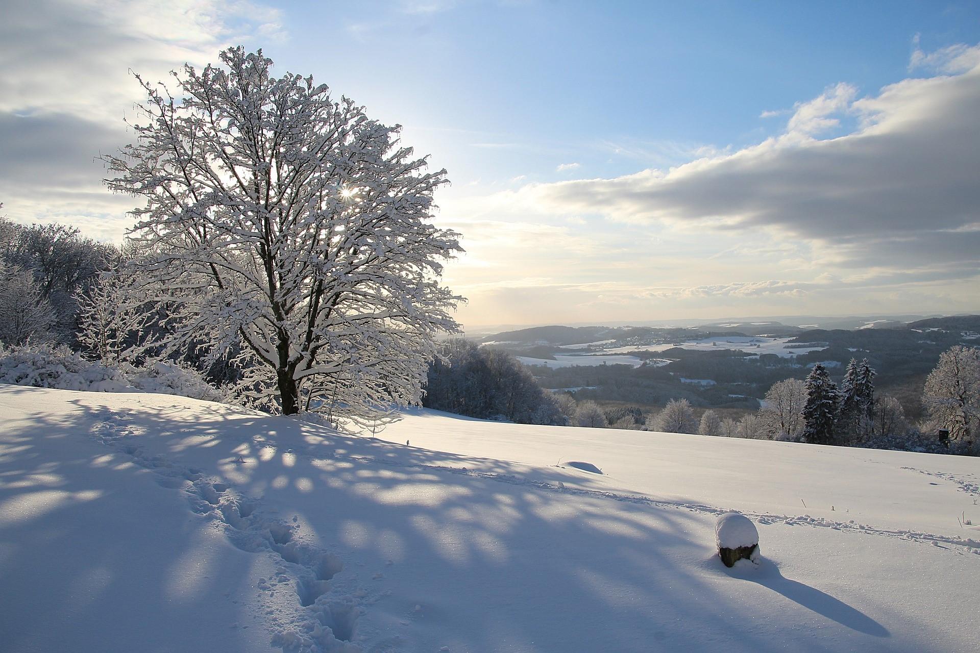 snow-3114631_1920.jpg