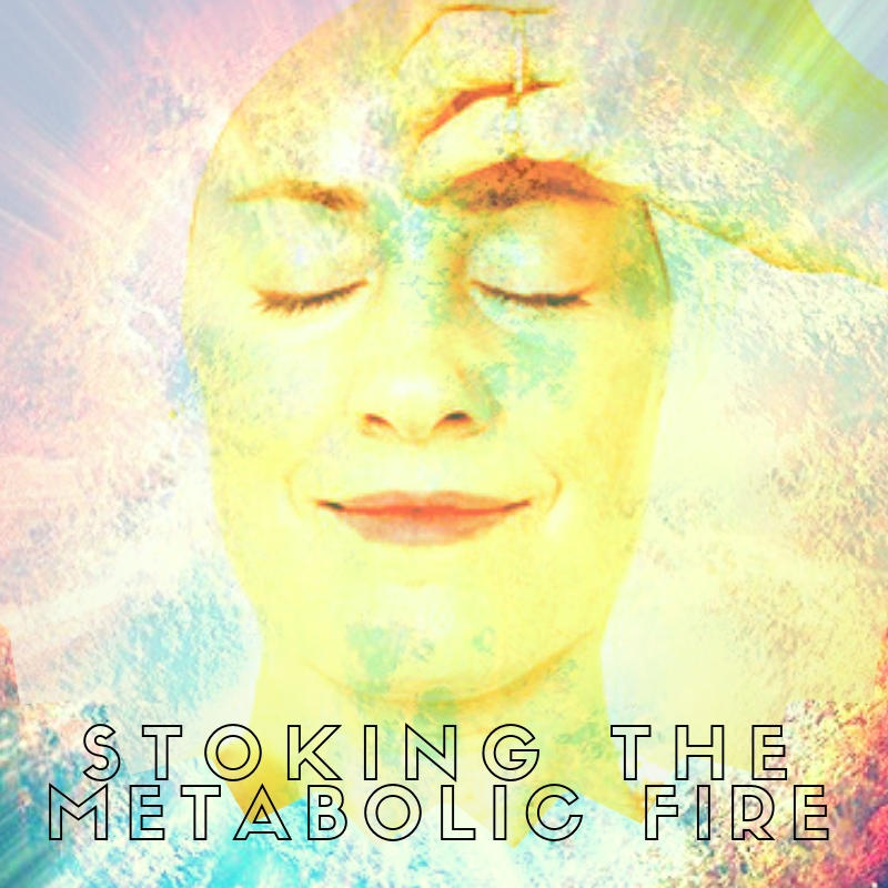 stoking the metabolic fire.jpg