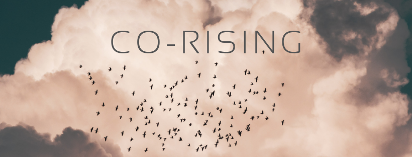 CO-RISING facebook banner.png