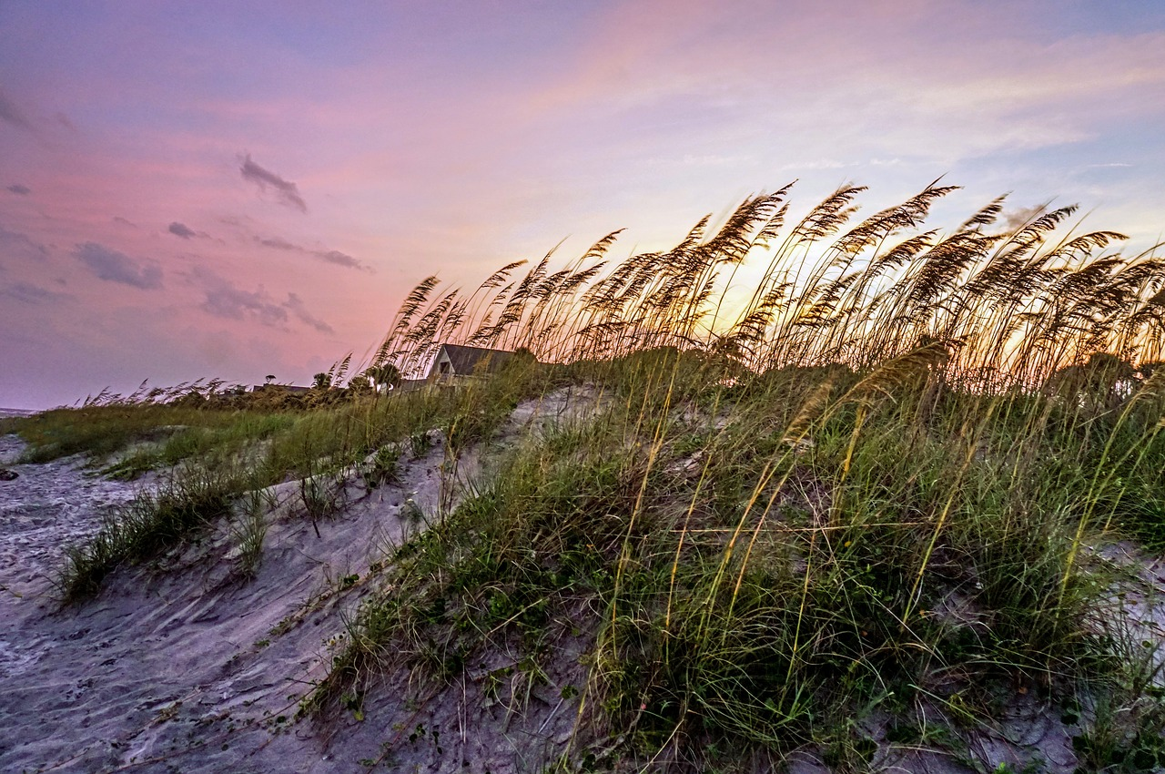 The Ultimate Guide to Weddings on the Beach in South Carolina | Palmetto State Weddings