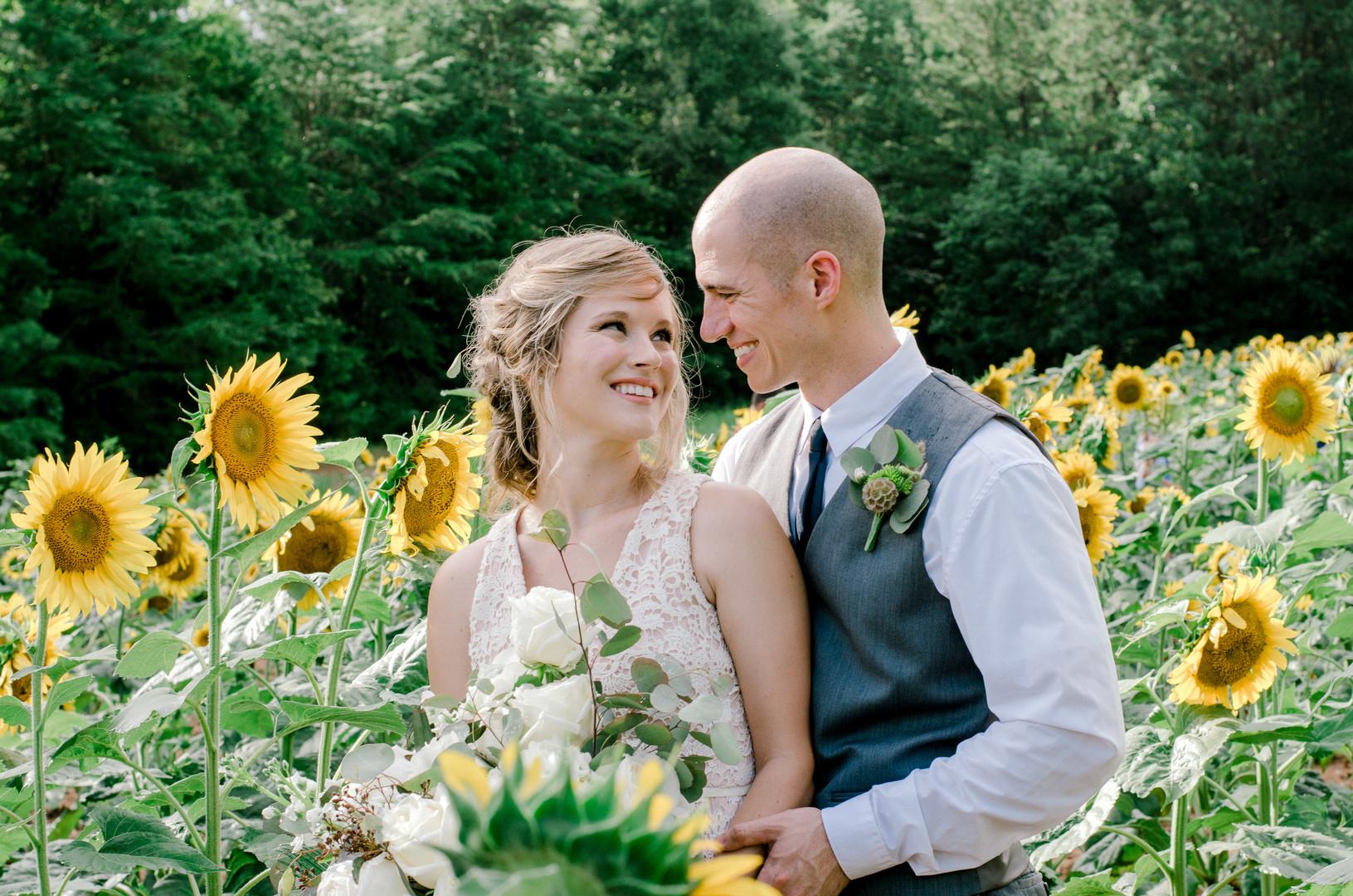 Sunflower Farm   McConnells