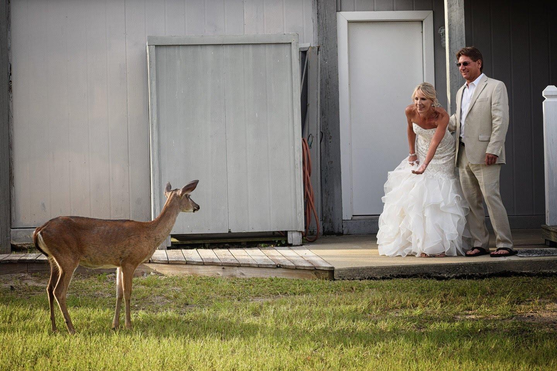 Marian + Jeff: Oceanfront Fripp Island Elopement   Palmetto State Weddings