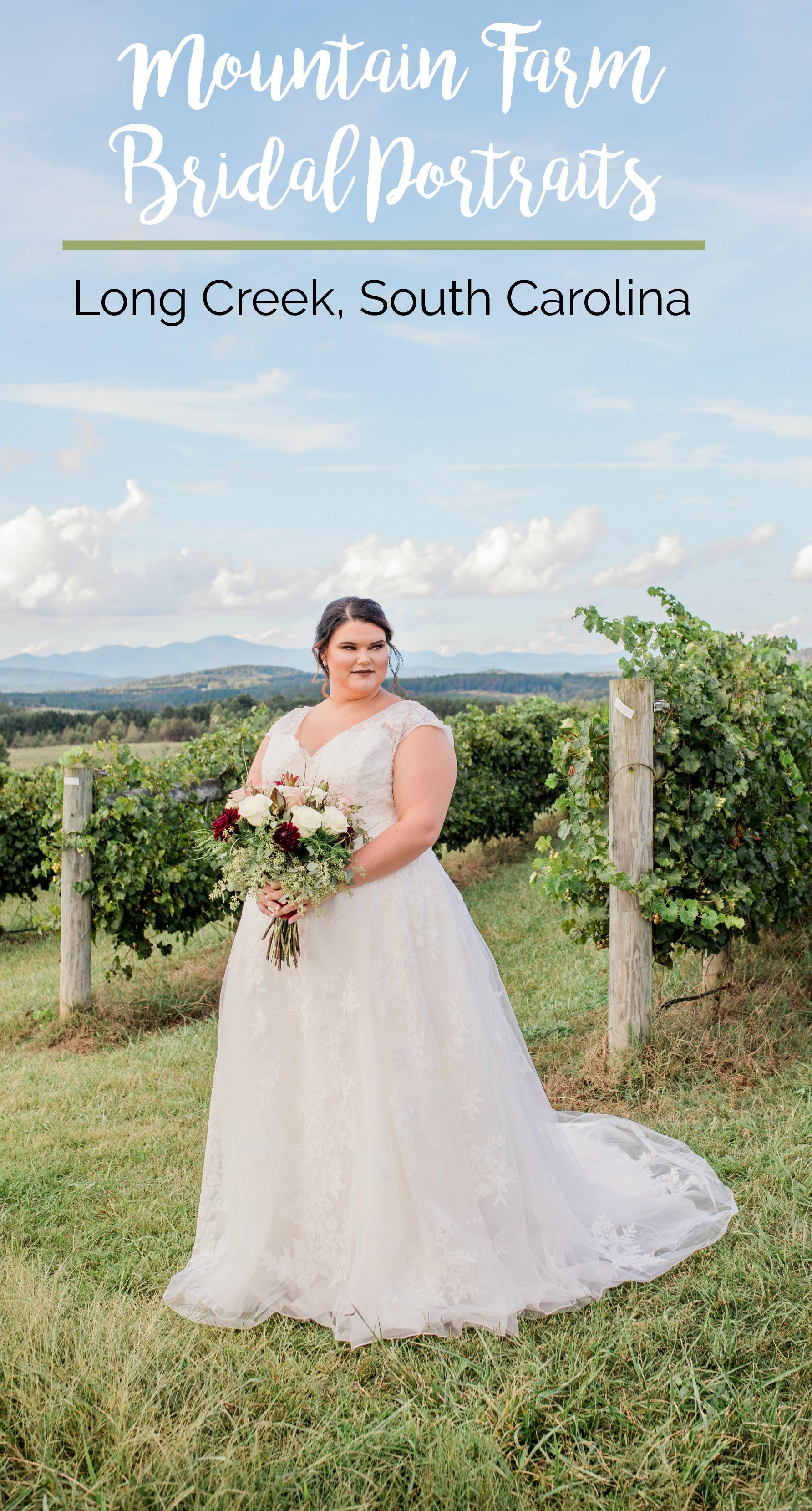 Brandi's Bridal Portraits at Chattooga Belle Farm, Long Creek, South Carolina | Palmetto State Weddings | CH Photography | Greenville SC wedding | bridal portrait inspiration | mountain wedding