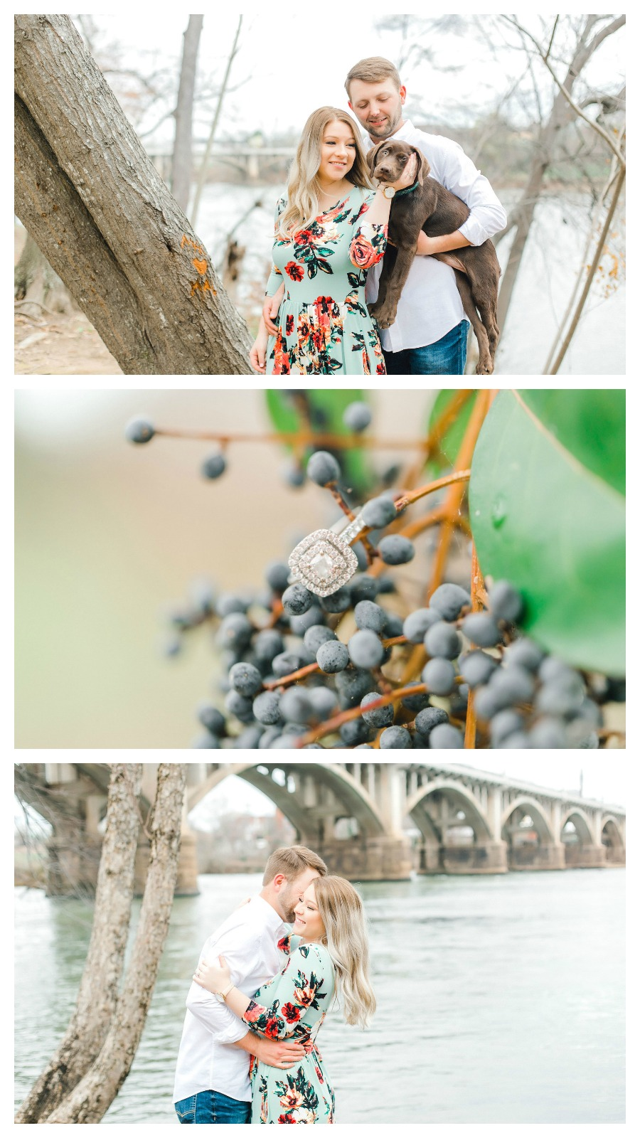 Mallory and Mac: Doggone Cute Engagement Portraits in Columbia, South Carolina | Palmetto State Weddings | Casey Hendrickson Photography | dogs in engagement photos
