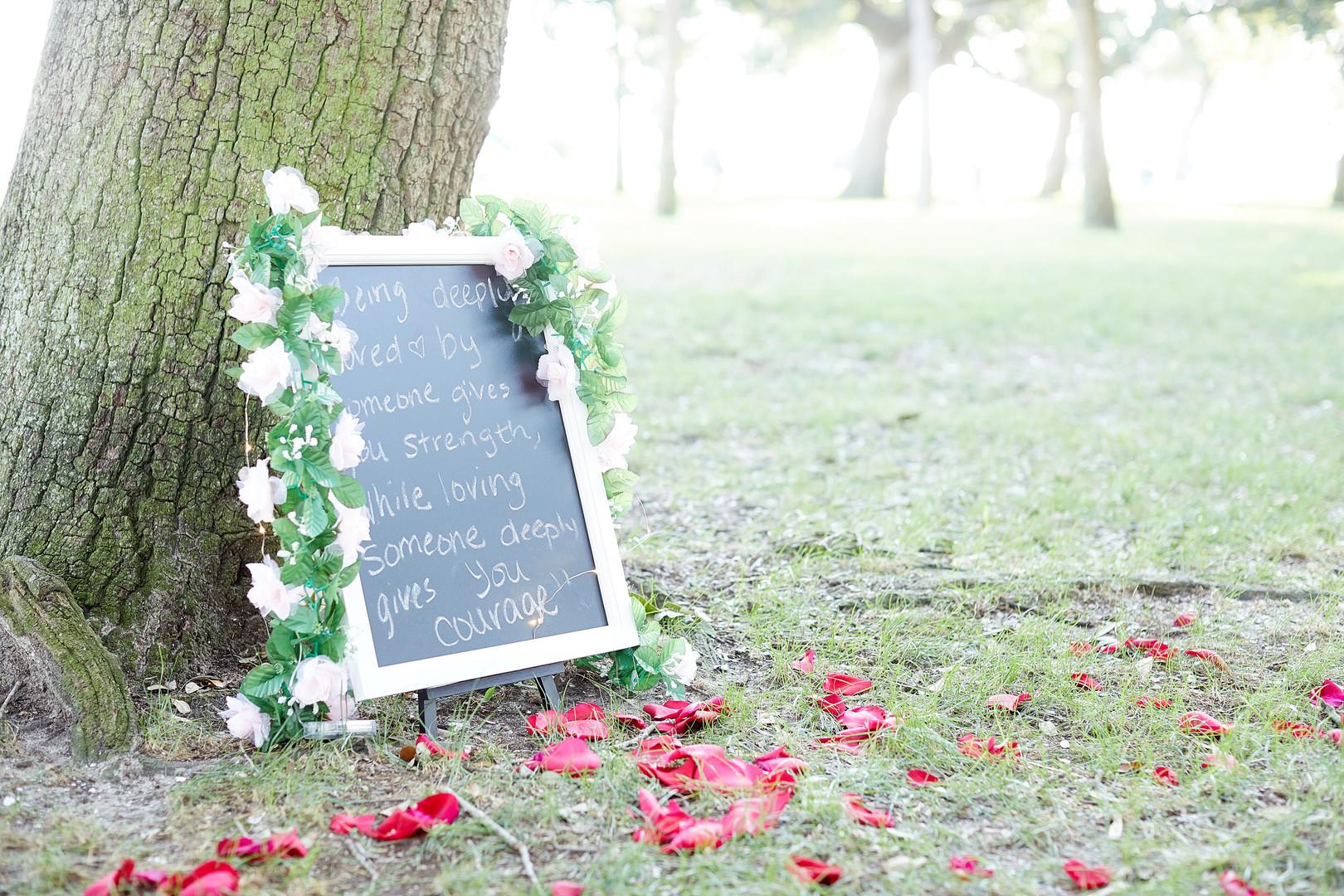 Kristin + Ryan: Surprise Engagement at White Point Gardens, Charleston   Palmetto State Weddings
