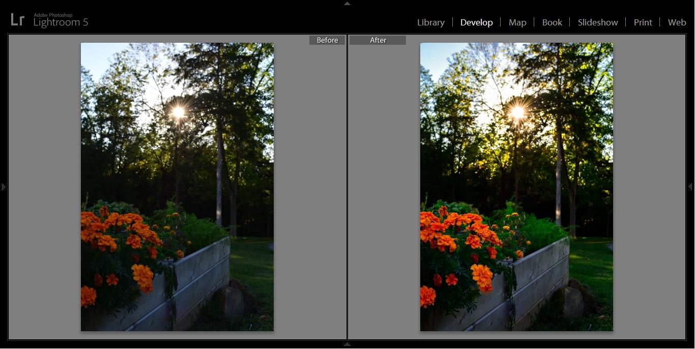 flower box before after.jpg