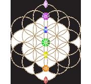 enlighten_medicine-logo-noBKG.png