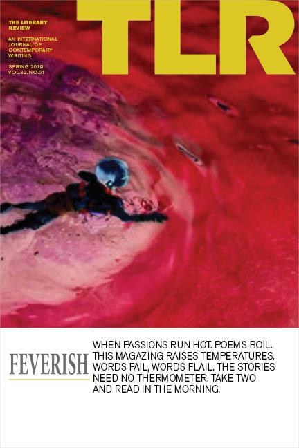 feverish-cover-web.jpg