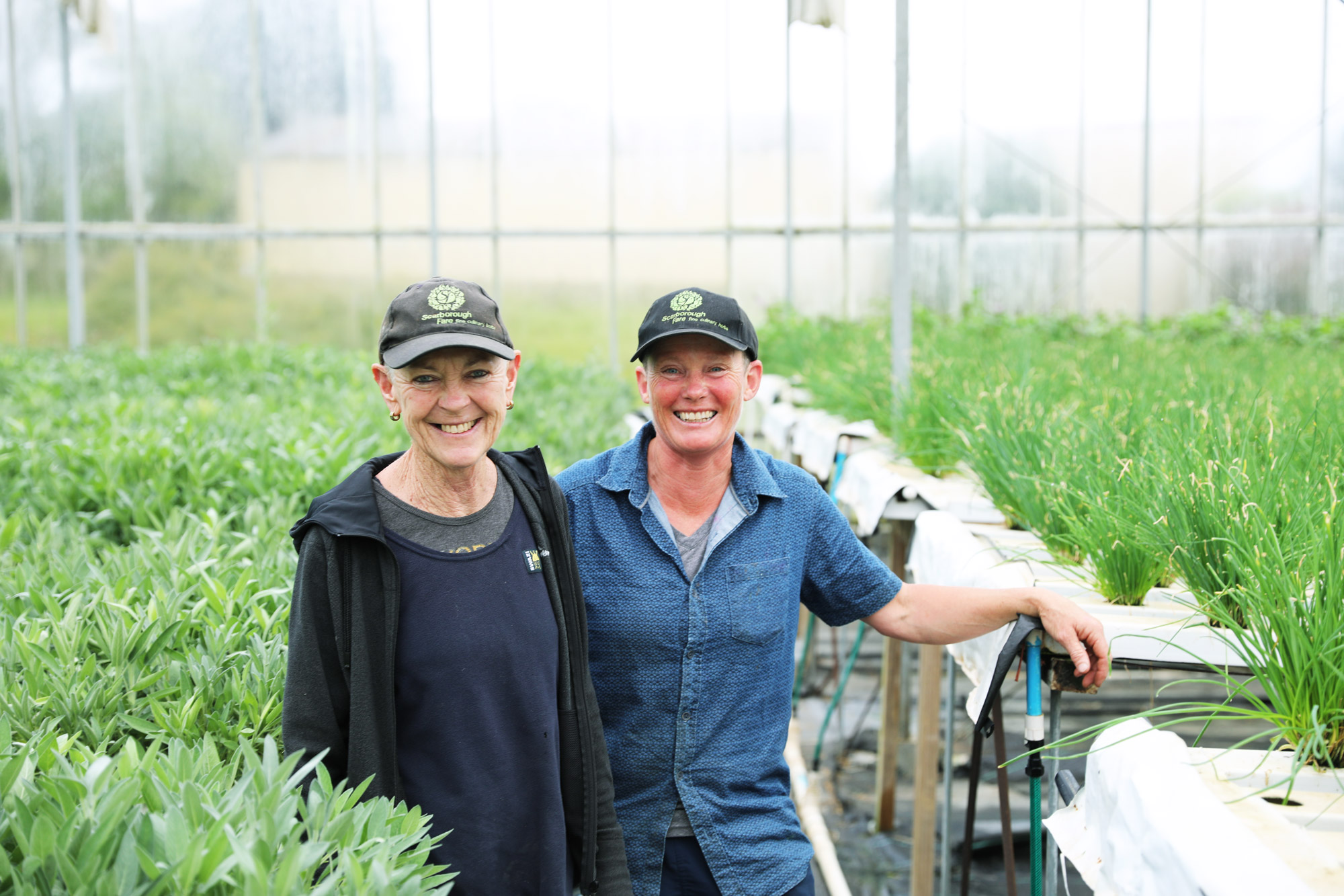 Led by people with a passion for what they do - Scarborough Fare Herbs is home to Pam Maurice and Jeanette Rea. They live and breathe the ethos of natural, sustainable quality that Scarborough Fare has become known for.