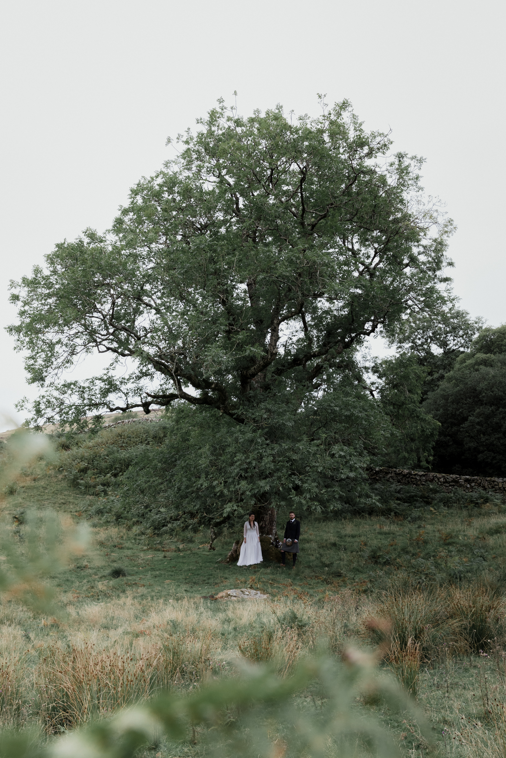 weddings-3765.jpg