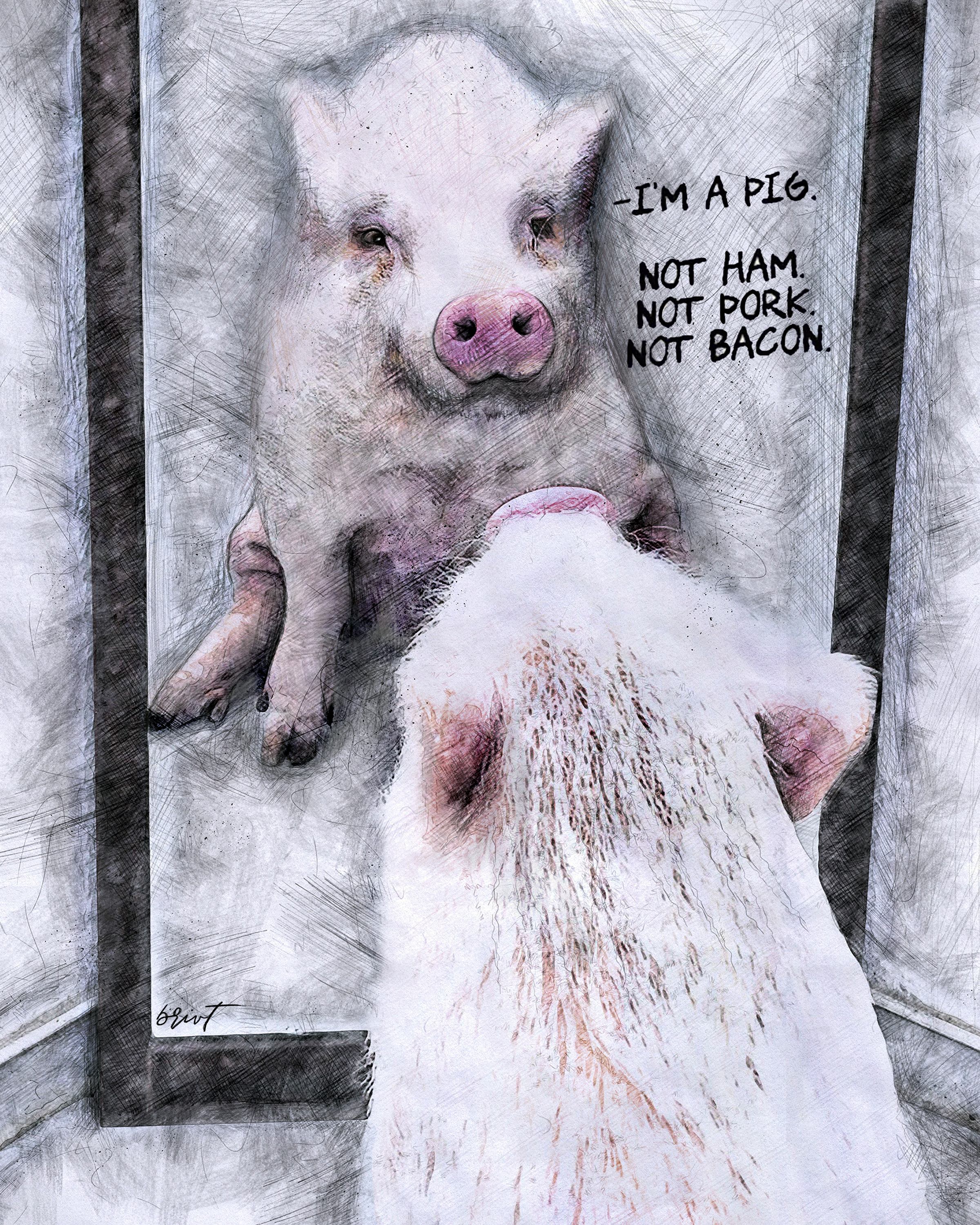 PigAffirmations8x10.png