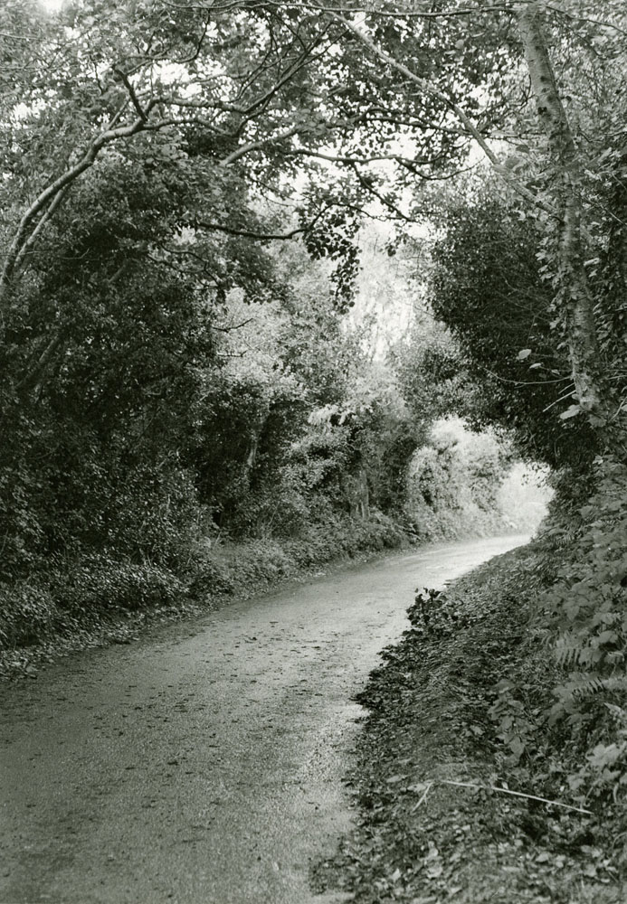 The Road Near Westport, Co. Mayo